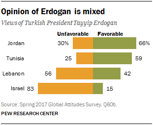 Chart showing that the opinion of Erdogan is mixed